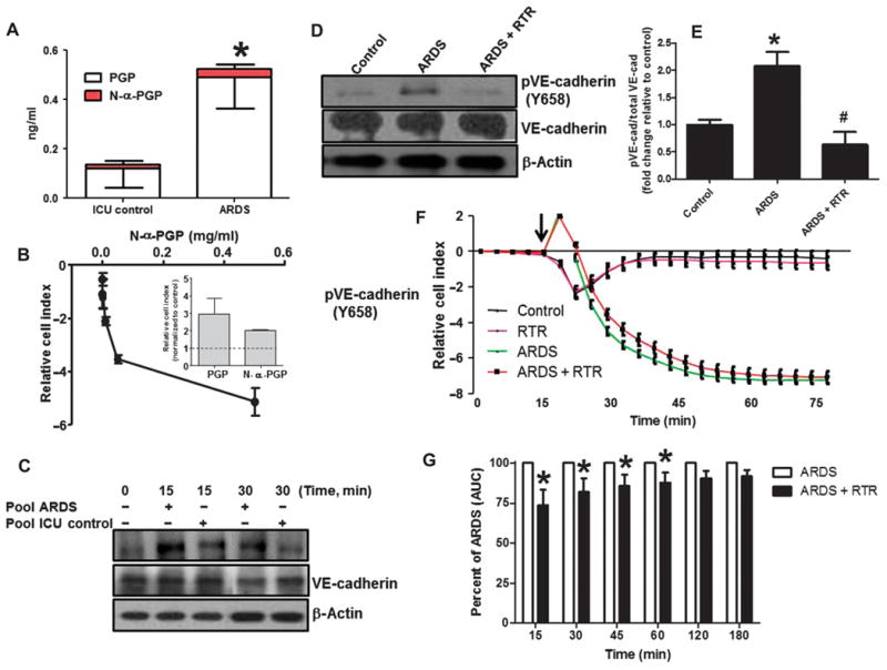 ARDS plasma induces endothelial activation, which is attenuated by RTR ( A ) Plasma was collected from patients with ARDS and normal control, and plasma PGP and N-α-PGP levels were measured via electrospray ionization–liquid chromatography–tandem mass spectrometry. * P