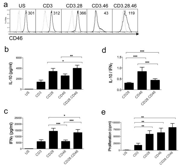 Concomitant CD28 and CD46 ligations modulate cytokine production Purified CD4 + T cells were left unstimulated (US), or were activated by immobilized anti-CD3 alone or in addition of anti-CD28 and/or anti-CD46 antibodies, as indicated. (a) Expression of CD46 was determined after 2 days. Dashed line = isotype control. The MFI obtained for CD46 are indicated. The production of IL-10 (b) and IFNγ (c) in the culture supernatants of activated purified T cells was determined by ELISA (n=14). (d) The IL-10:IFNγ ratio is also represented for costimulated T cells. (e) Proliferation was monitored by thymidine incorporation. Mean +/− SEM is represented.