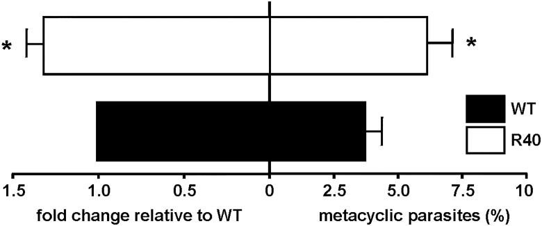 Metacyclogenesis in WT and MIL-resistant L . major . L . major promastigotes resistant to MIL exhibit increased metacyclogenesis as determined by qRT-PCR of SHERP expression relative to housekeeping gene GAPDH and normalized to WT expression levels (left). 5-day stationary parasites were subjected to peanut agglutination and Ficoll-400 gradients and percentage of metacyclics is shown (right). Results are the average of triplicate experiments ± SD. Statistical differences determined with a Student's t test relative to control values (* p