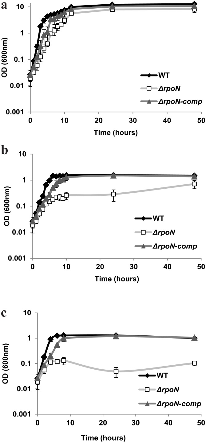Growth. Growth of B . cereus ATCC 14579 WT, Δ rpoN and Δ rpoN -comp in BHI in three conditions with different oxygen availability a) aerated, b) static and c) anaerobic at 30°C.