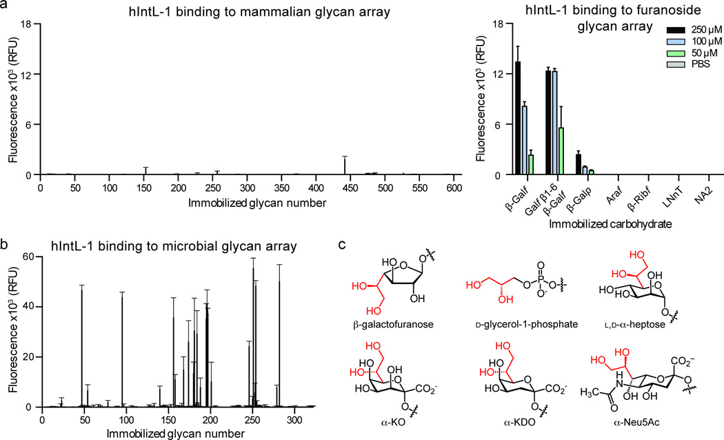 Glycan selectivity of hIntL-1 assessed by glycan microarrays. ( a ) Recombinant hIntL-1 (50 µg/mL) binding to mammalian glycan microarray CFG v5.1 and a furanoside array. The concentrations given for the furanoside array represent those used in the carbohydrate immobilization reaction. Data are presented as the mean ± s.d. ( n =4 technical replicates). The full data set can be found in Supplementary Tables 1 and 2 . ( b ) Recombinant Strep -hIntL-1 (50 µg/mL) binding to microbial glycan array. For glycan array data organized by genus, see Supplementary Fig. 2a . Data are presented as the mean ± s.d. ( n =4 technical replicates). The full data set can be found in Supplementary Table 3 . ( c ) Structural representation of the putative key binding epitopes for hIntL-1 and the non-binding N-acetylneuraminic acid (α-Neu5Ac). A terminal vicinal diol (red) is a common feature of α-Neu5Ac and all of the ligands identified.
