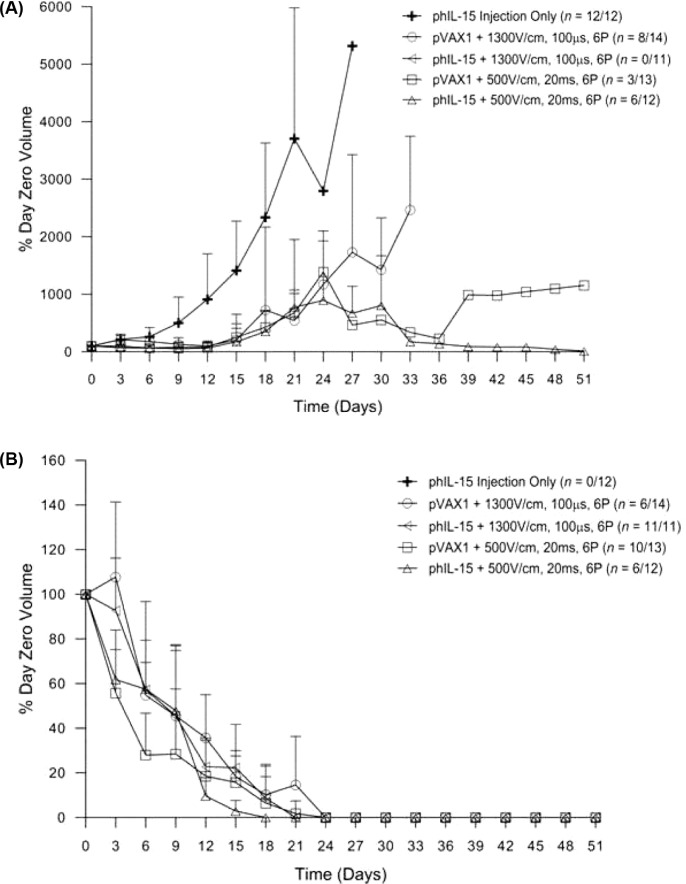 Tumor regression after multiple deliveries of phIL-15 using electroporation. Tumor volume (mm 3 ) monitored over 50 days for non-responders ( A ) and responders ( B ) following intratumoral delivery of 50 pl of phIL-15 (2.0 mg/ml) on days 0, 3, and 6 using either six 100 μs pulses at 1300 V/cm or six 20 ms pulses at 500 V/cm delivered by penetrating electrode array. The group that received phIL-15 using six 20 ms pulses at 500 V/cm had one mouse represented on the non-responder graph (A), with a tumor that increased in volume up to day 30 and then regressed. On day 51 there was a measureable mass. Data is represented as the average percentage of the volume of the tumor at day zero. Error bars represent standard deviation. The number of responders or nonresponders is indicated on the graph as a fraction of the total number of animals in each group. P pulses; pVAX1 control plasmid; phIL-15 plasmid encoding the hIL-15 gene.