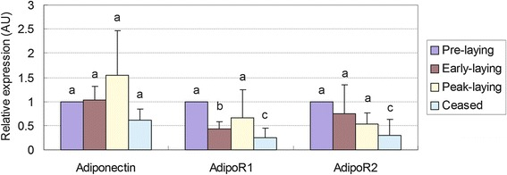 Relative expression of adiponectin, AdipoR1 and AdipoR2 mRNA in the hypothalamus of Huoyan geese during different stages of the egg-laying cycle. The expression levels of adiponectin, AdipoR1 and AdipoR2 were normalized to 18S rRNA. The expression levels, calculated by the 2 −ΔΔCt method, are presented as arbitrary units (AU). The presented values are the means ± SEM. The data were analysed by ANOVA followed by Tamhane's T2 test post hoc test. Bars with different superscripts are significantly different ( P