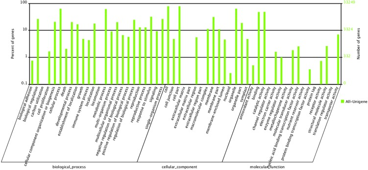 Gene ontology (GO) classification for the P . delavayi <t>transcriptome.</t> The transcripts (33,249) were categorized into 55 function groups. The right y-axis indicates the number of genes in a category, whereas the left y-axis indicates the percentage of a specific category of genes in the corresponding main category.