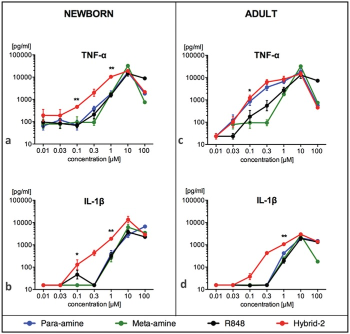 Hybrid-2 is more potent and effective than R848, para-amine and meta-amine in a whole blood cytokine assay. Human newborn and adult blood was cultured for 6h with TLR 7/8 agonists R848, para-amine, meta-amine and Hybrid-2 and supernatants collected for TNF or IL-1β ELISA. Compound concentrations are shown in μM. Data are shown as mean ± SEM of n = 6–8. For between-agonist analyses, t test was applied to compare Hybrid-2 to the other compounds. For between age-group analyses, t test was applied to compare Hybrid-2 and R848 in newborns and adults. Statistical significance is denoted as follows: *p