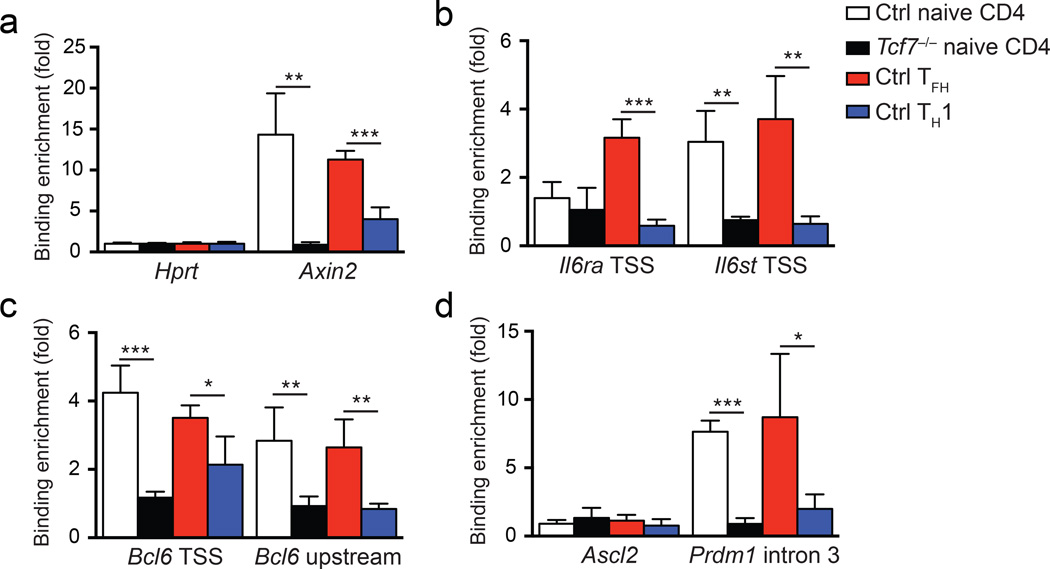 TCF-1 binds to key T FH -associated genes in T FH  cells (a-d)  ChIP assays using anti-TCF-1 antibody or control IgG were performed on naive control CD4 +  T cells (CD44 lo CD62L + CD4 + ); naive  Tcf7 −/−  CD4 +  T cells (GFP + CD44 lo CD62L + CD4 + ); WT T FH  cells (CXCR5 + CD44 hi CD62L − CD4 + ); and WT T H 1 cells (CXCR5 − CD44 hi CD62L − CD4 + ). T FH  and T H 1 cells were sorted from B6 mice 8 d after vaccinia virus infection. Quantitation of enriched TCF-1 binding was done at the positive control  Axin2  gene  (a) , the TSS of the  Il6ra  and  Il6st  genes  (b) , the TSS and a −2.8 kb upstream regulatory region of the  Bcl6  gene  (c) , and the TSS of  Ascl2  and intron 3 of  Prdm1 (d) , and data are means ± s.d. from 3 independent experiments. *  P