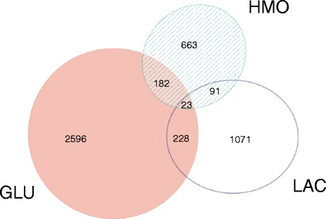 Number of Caco-2 genes differentially expressed between B. infantis ATCC 15697 and B. breve SC95 in response to different substrates (GLU = glucose, LAC = lactose, HMO = human milk oligosaccharides). Venn diagram prepared using EulerAPE [ 62 ]