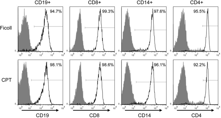 Purity of immune cell subsets obtained from PBMC isolated by either Ficoll or CPT procedures. CD19+, CD8+, CD14+, and CD4+ cell subsets were sequentially separated from PBMC isolated by Ficoll and CPT protocols from the same donor and their purity was determined by flow cytometry using antibodies against surface markers specific for individual immune cell types. Filled histograms were given by appropriate immunoglobulin isotype controls. Gates for determining positivity were established using isotype controls so that ~99.0 % of events were negative