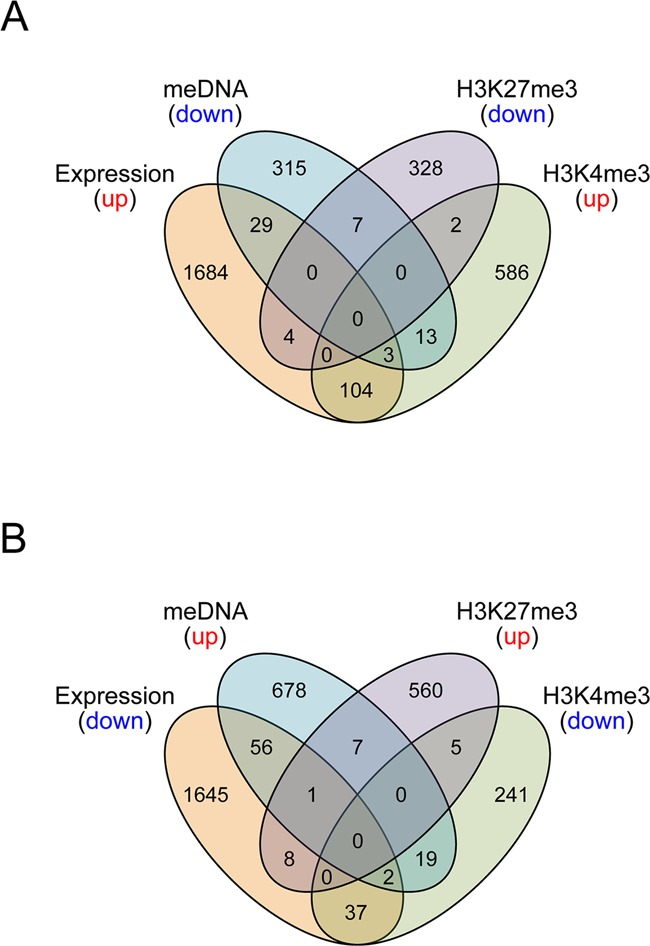 Venn diagrams showing overlap between epigenetic and transcriptional data sets for the top 3CA scores. Transcripts which were preferentially up-regulated with age were compared with down-regulated H3K27me3 regions, down-regulated DNA methylation regions, and up-regulated H3K4me3 regions and vice versa (panels A and B , respectively). Data included are within 1 SD from the best score (top ∼2%).