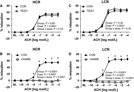 Effects of endothelin-1 receptor blockade with tezosentan (TEZO) and nitric oxide synthase inhibition (L-NAME) on acethylcholine (ACh)-induced vasorelaxation of thoracic aortic rings of low-capacity running (LCR) and high-capacity running (HCR) rats. The left panel (A and B) present data from ACh dose-response curves in HCR, and right panel (C and D) present data from ACh dose-response curves in LCR. Closed circles represent % relaxation in response to ACh alone, open triangles represent % relaxation to ACh in the presence of 3 μ M tezosentan, a nonspecific inhibitor of ET-1 receptors (top panel, A and C) N = 9–16/group, and open squares represent % relaxation to insulin in the presence of 300 μ M L-NAME, a nitric oxide synthase inhibitor, (bottom panel, B and D) N = 6–8/group. Values are expressed as means ± SEM *Denotes line difference ( P