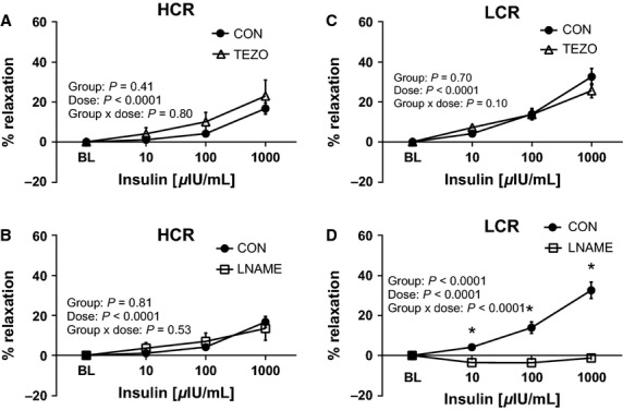 Effects of <t>endothelin-1</t> receptor blockade with tezosentan (TEZO) and nitric oxide synthase inhibition (L-NAME) on insulin-mediated vasorelaxtion of thoracic aortic rings of low-capacity running (LCR) and high-capacity running (HCR) rats. The left panels (A and B) present data from insulin dose-response curves in HCR, and right panel (C and D) present data from insulin dose-response curves in LCR. Closed circles represent % relaxation in response to insulin alone, open triangles represent % relaxation to insulin in the presence of 3 μ M TEZO a nonspecific inhibitor of ET-1 receptors (top panel, A and C) N = 9–16/group, and open squares represent % relaxation to insulin in the presence of 300 μ M L-NAME, a nitric oxide synthase inhibitor, (bottom panel, B and D) N = 6–8/group. Insulin μ IU/mL, micro-international units per milliliter. Values are expressed as means ± SEM. *Denotes line difference ( P