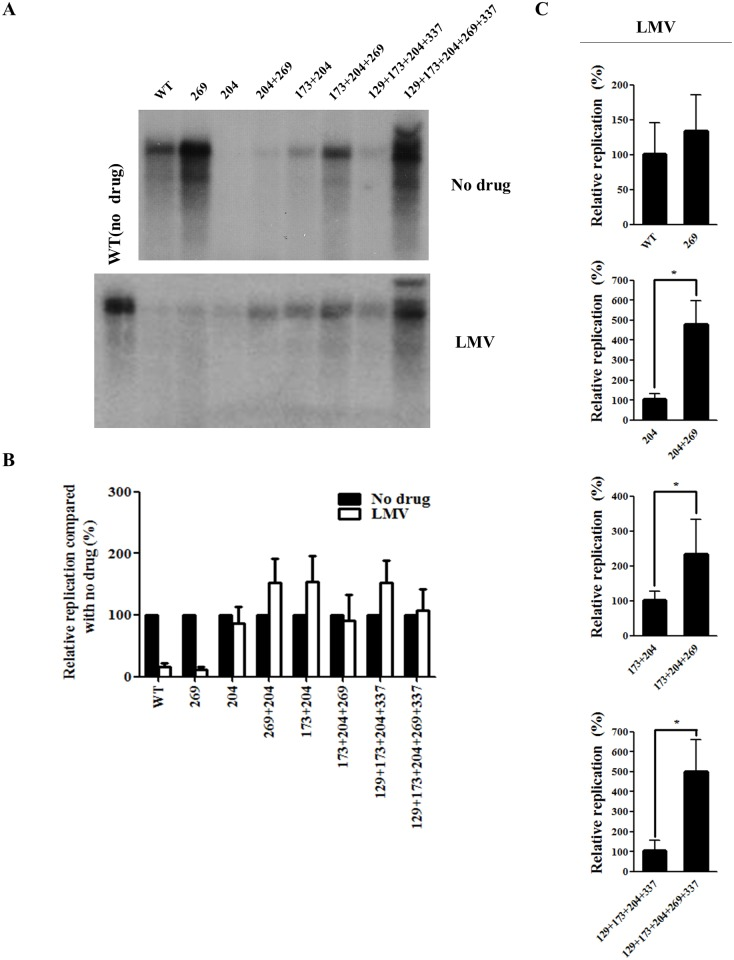 Effect of rtL269I and other substitutions on resistance to lamivudine (LMV). (A) HBV DNA constructs were transfected into Huh7 cells, which were treated with LMV for 3 days. The intracellular HBV DNA was prepared for Southern blot analysis. A representative result has been shown. (B) The relative replication levels of each HBV mutant (no drug vs LMV treatment) were calculated based on the results of Figs 2C and 3A. (C) The relative replication ability of the HBV mutants treated with LMV were determined by Southern blotting and quantified by Phosphorimager (*, P