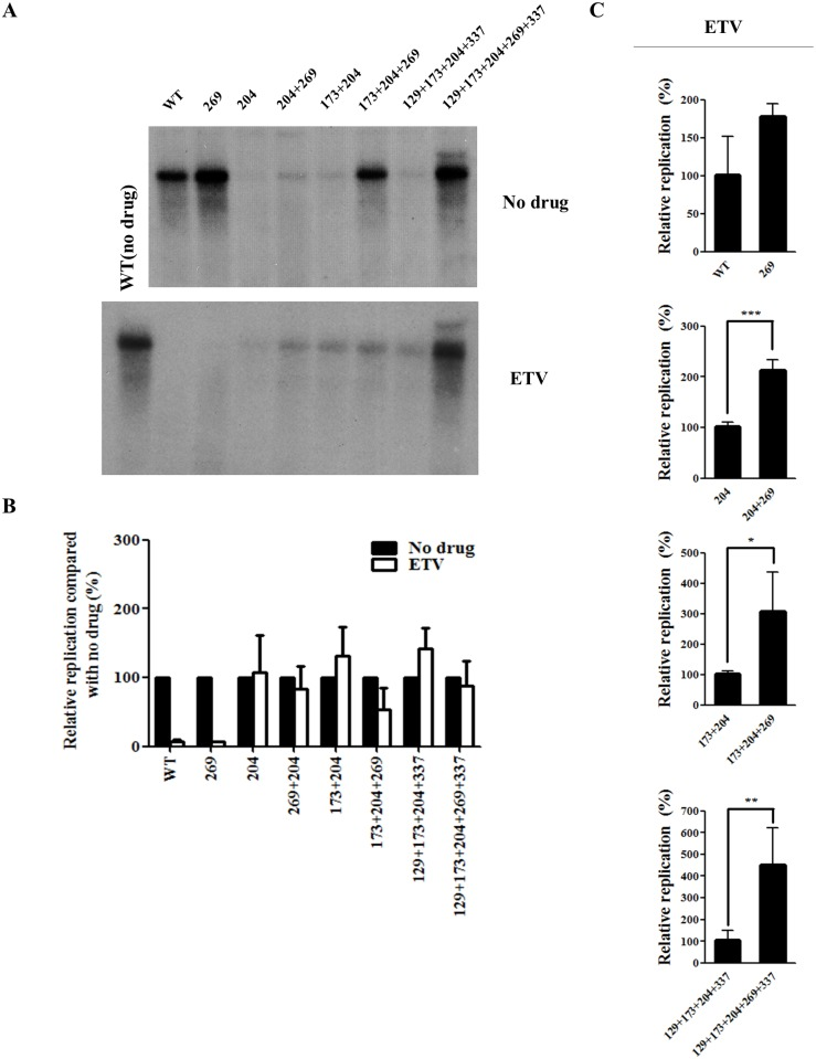 Effect of rtL269I substitution on the resistance to entecavir (ETV). (A) HBV 1.2mer DNA of all the mutants was transfected into Huh7 cells, which were treated with ETV for 3 days. The intracellular HBV DNA level was determined by Southern blot analysis. A representative result was displayed. (B) The relative replication levels of each HBV mutant (no drug vs ETV treatment) was calculated based on the results displayed in Figs 2C and 4A. (C) The relative replication ability of the HBV mutants treated with ETV were determined by Southern blot analysis, and quantified by Phosphorimager (*, P