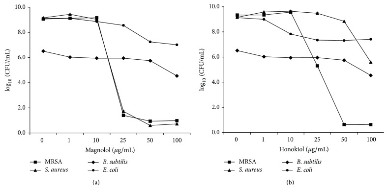 Antimicrobial activities of magnolol (a) and honokiol (b) against Staphylococcus aureus (ATCC 6538), methicillin-resistant Staphylococcus aureus (MRSA, ATCC 33591), Bacillus subtilis (ATCC 6633), and <t>Escherichia</t> coli (ATCC 8739). All strains were cultured at 34°C for 24 h with tryptic soy medium (Difco) under aerobic conditions before the assay. For antibacterial activity test, Mueller-Hinton medium (Difco, Detroit, MI) was used.