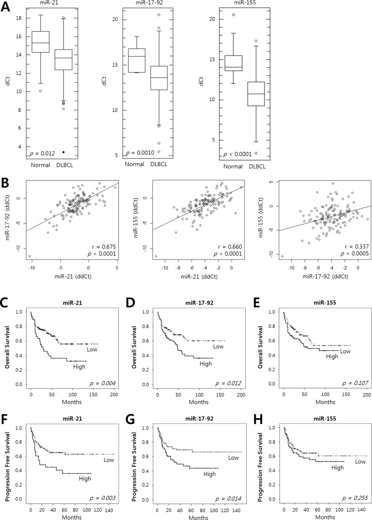 Expression of miR-21, the miR-17-92 cluster and miR-155 in tumor tissues of DLBCL patients and their prognostic implications A , The levels of expression of miR-21, the miR-17-92 cluster and miR-155 were evaluated in the tumor tissues of DLBCL patients (n = 200) and in normal tonsils as a control (n = 11) using qRT-PCR. Box-and-whisker plots demonstrate the levels of expression of miR-21, the miR-17-92 cluster, and miR-155 as dCt (= Ct (miRNA) - Ct (U6) ) values in the DLBCL tissues compared with those in normal tonsils. A lower dCt implies a higher relative level of miRNA. The differences in the miRNA levels of the DLBCL and normal group were evaluated using Student's t-test. B , The relative expression levels of the miRNAs were calculated as ddCt (= dCt (case) - mean dCt (control) ). The diagrams show the correlation of the relative expression levels of miR-21, the miR-17-92 cluster and miR-155 determined using Pearson's correlation analysis (r, correlation coefficient). Kaplan-Meier curves obtained using the log-rank test show C - E , the overall survival and F - H , the progression-free survival of patients with DLBCLs with high vs. low relative expression levels of miR-21, the miR-17-92 cluster, and miR-155.