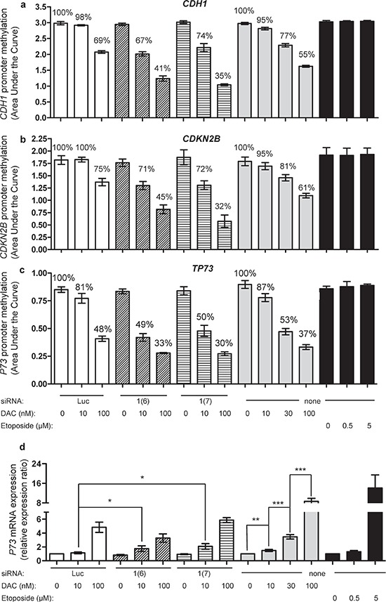 Impact of combining DNMT1 siRNA with DAC on promoter methylation of CDH1 and CDKN2B, and promoter methylation and expression of TP73 CDH1 (a) , CDKN2B (b) and TP73 (c) methylation was measured by MS-HRM 72 h after treating the cells with DNMT siRNA Luc (100 nM, white bars), siRNA DNMT1 (6) at 100 nM (hatched bars), siRNA DNMT1 (7) at 100 nM (stripped bars) and in combination with DAC (10 and 100 nM) (left), compared to DAC alone at 10, 30 and 100 nM (gray bars) or etoposide at 0.5 and 5 μM (black bars) (right). The mean percentage values of methylation, relative to the respective controls are indicated. (d) qRT-PCR analysis of TP73 mRNA expression of the above treated cells. The expression ratio of the controls was normalized to 1, i.e ., luciferase siRNA (for electroporated cells), water (the solvent of DAC) and DMSO (the solvent of etoposide), respectively. P value: * ≤ 0.05, ** ≤ 0.01 and *** ≤ 0.001.