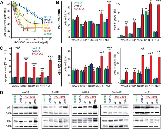 """Inhibition of cdk1 by a small molecule inhibitor, RO-3306, induces apoptosis and causes an activation of the p53 signaling pathway A. Inhibition of cdk1 by RO-3306 caused decreased cell viability after 48 h in all NB cell lines investigated and also in the rhabdomyosarcoma cell line RH-41 in a concentration dependent manner. The human fibroblast cell line, NHDF, and the cell lines harboring p53 mutation (SK-N-FI, RH-41) were more resistant to RO-3306 than the tumor cell lines with p53 wild type. B. Cell cycle distribution was analyzed 24 h and 48 h after RO-3306 treatment. Only cells harboring a p53 mutation (SK-N-FI, NLF) presented with significantly higher fraction of G2 phase (left side), while all cell lines had significantly elevated subG1 indicative of apoptosis. C. Significant induction of apoptosis by RO-3306 could be confirmed in all cell lines by a colorimetric assay detecting nucleosomes. D. Activation of the p53 pathway in p53 wt cells shown by increased p53 and p21 protein levels. Significant differences between untreated cells and inhibitor treated cells are depicted in the entire diagram using the following code """"***"""": p"""