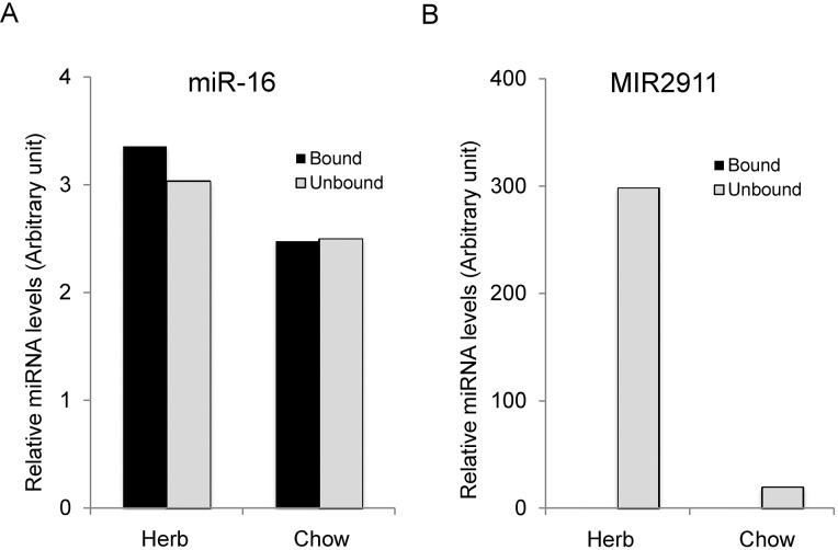 Serum MIR2911 is not associated primarily with AGO2. (A) Quantification of MIR2911 in AGO2-associated immunoprecipitates and unbound fractions of serum from animals fed an herb-based diet or a standard chow diet. (B) miR-16 immunoprecipitation was analyzed as an endogenous control for AGO2 precipitation. Levels of MIR2911 and miR-16 were each normalized to spiked-in exogenous MIR161. This experiment is representative of more than five different experiments done with herbal-fed mice (honeysuckle, chamomile).