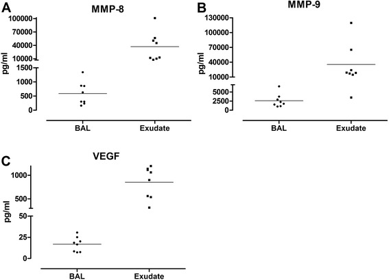 Levels of structural cytokines MMP-8 ( a ), MMP-9 ( b ) and VEGF ( c ) measured in bronchoalveolar lavage (BAL) and bronchoabsorptive matrix exudate