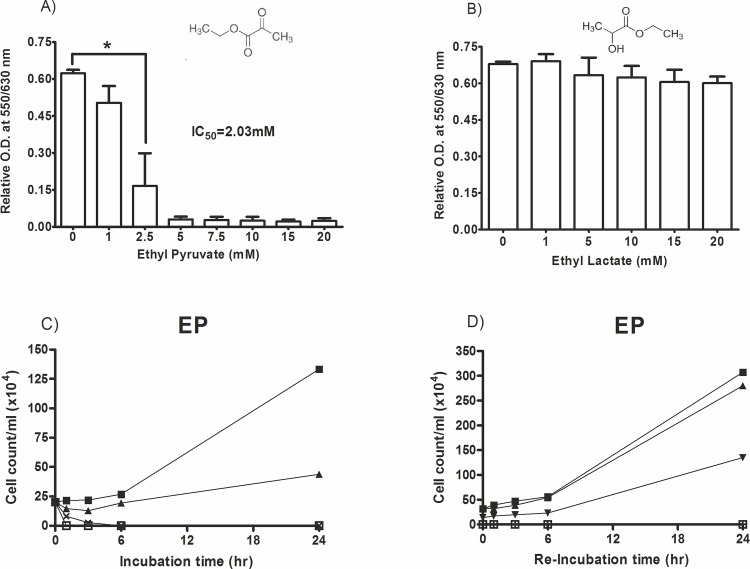 Effect of ethyl pyruvate and ethyl lactate on T. brucei cells proliferation. A cell proliferation/viability assay was conducted in 96-well cell culture plates containing 2x104 cells, medium and ethyl pyruvate in a volume of 200 μl. After 24 hrs of incubation the AlamarBlue cell proliferation reagent (20 μl) was added and the absorbance was read: (A) Ethyl pyruvate; (B) Ethyl lactate; (C) For the time-dependency test 2x105 cells/ml were cultured in 24-well plates in the presence of different concentrations of ethyl pyruvate at 0 mM (■), 1 mM (▲), 2.5 mM (x) and 5 mM (□). After certain time intervals aliquots were removed and the number of vital cells was counted. (D) For cell-recovery test 2x105 cells/ml were cultured in the presence of ethyl pyruvate at 0 mM (■), 1 mM (▲), 2.5 mM (▼), 5 mM (□) for 3 hrs in 24-well plates. Then, the medium was removed and the cells were replenished with fresh medium without the ethyl pyruvate and further cultured for 24 hrs. At the indicated time points aliquots were removed and vital cells were counted. Cells were cultured at 37°C containing 5% CO2 in a 100% humidified environment, * p