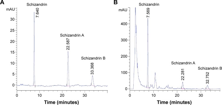 Evaluation of the components in Schisandra chinensis extracts (SCE) using high-performance liquid chromatography assay. Notes: ( A ) The mixture of the three reference compounds. ( B ) The sample of SCE. Chromatographic separation was performed on a Kromasil C18 column (250 mm ×4.6 mm id, 5 μm) at 35°C. The mobile phase consisted of eluents A (water) and B (methanol). The elution program was optimized and conducted as follows: a linear gradient of 68–70% B (0–5 minutes), a linear gradient of 70–75% B (5–15 minutes), an isocratic elution of 75% B (15–38 minutes), a linear gradient of 75–68% B (38–39 minutes), an isocratic elution of 68% B (39–45 minutes). The peaks were recorded using PDA absorbance at 254 nm and the solvent flow rate was kept at 1.0 mL/min.