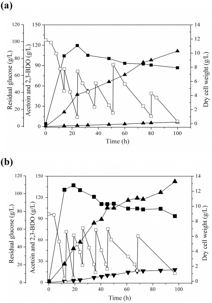 Time course of 2,3-BDO fermentation by K . oxytoca M1 (pUC18CM- budC ) at different agitation speeds. (a) 300 rpm and (b) 400 rpm. Fed-batch fermentation was carried out with the medium containing 5 g/L yeast extract and 10 g/L casamino acid. Symbols indicate dry cell weight (■), residual glucose (□), 2,3-BDO (▲) and acetoin (▼).