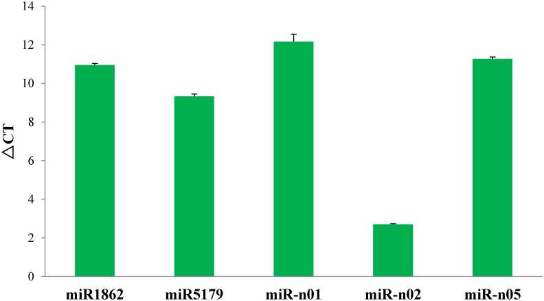 Quantitative real-time PCR analysis of parts miRNA identified in barley. Note: The amount of expression was normalized to the level of 16s RNA.