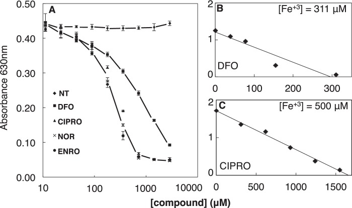 FQs are potent iron chelators. A, iron chelation as determined by CAS competition assay. Iron binding stoichiometries were determined for DFO (positive control) ( B ) and CIPRO with iron at indicated concentrations (higher than K d ) ( C ). Data are representative of n ≥ 3 independent experiments. NT , not treated (diluent only).
