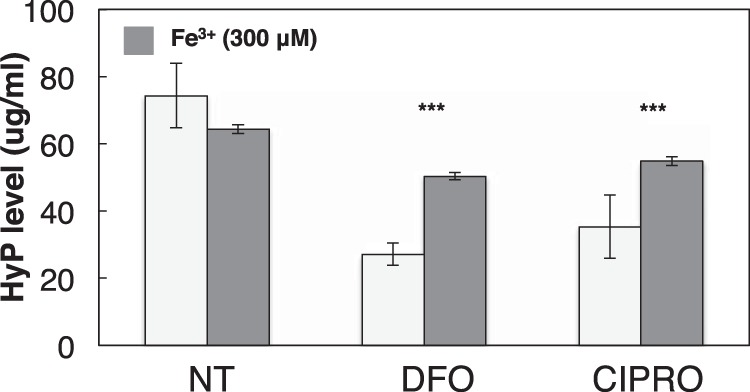 FQ treatment inhibits collagen proline hydroxylation. HEK293 cells were co-treated with 50 μg/ml ascorbate and either NT, DFO, or CIPRO for 72 h as follows: 0 h, 100 μ m ; 24 h, 150 μ m; and 48 h, 250 μ m . At 72 h, cells were harvested and processed for quantification of hydroxyproline ( HyP ) in total collagen. Similarly, 300 μ m ferric citrate was added to NT, DFO, or CIPRO cell cultures, and hydroxyproline levels were assessed accordingly. Data are normalized to cell number and represent at least three independent experiments. Data are reported as means ± S.D. Statistical analysis was performed using paired t test (compared with NT). Significant difference (***, p ≤ 0.005) is shown. NT (diluent only).