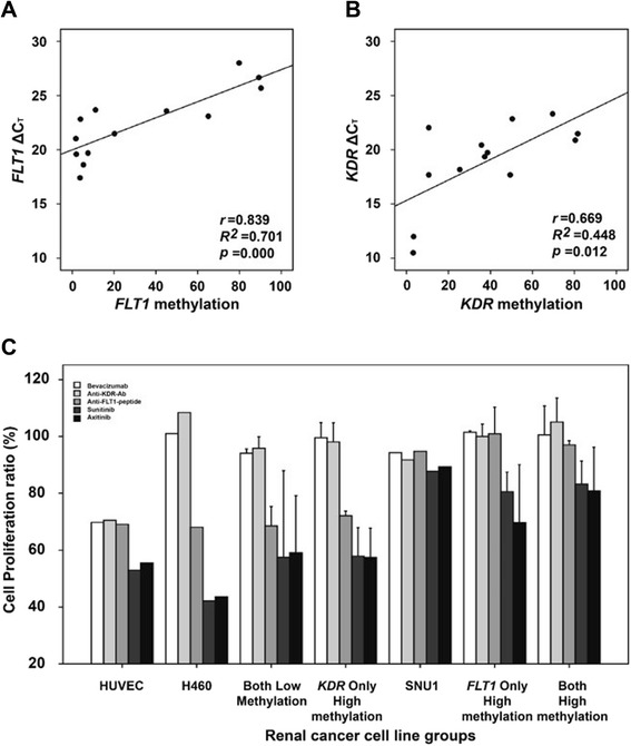 Expression changes and anti-VEGF/VEGFR drug efficacies associated with FLT1 and KDR methylation changes. Analysis of gene expression of FLT1 ( a ) and KDR ( b ) in 13 RCC lines. Evaluation of the effects of bevacizumab, an anti-FLT1 peptide, an anti-KDR antibody, sunitinib, and axitinib on RCC line proliferation was classified according to the hypermethylation status of FLT1 and/or KDR ( c ). H460 cells and SNU1 cells were used as control cell lines that lacked or high methylation of either gene, respectively . The error bars show standard errors