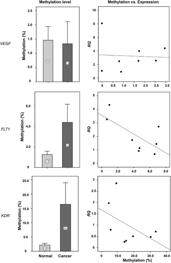VEGF , FLT1 , and KDR promoter methylation and expression differences between normal and cancer tissues. Normal , normal tissues; cancer , cancer tissues collected from eight renal cancer patients