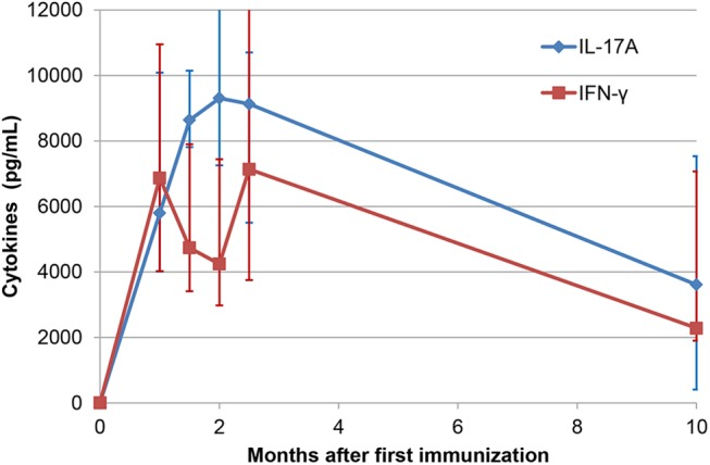 Persistence of reactivity to ovalbumin. Concentrations of IL-17A and IFN-γ yielded by the whole blood assay performed at different times after immunization with ovalbumin. Results are the median values (and interquartiles) from the 8 responder cows still available 10 months post-immunization.