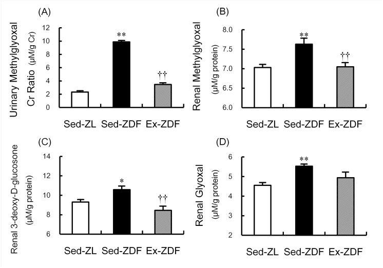Effects of chronic running exercise on α-oxoaldehydes in Zucker diabetic fatty rats. (A) Urinary methylglyoxal (MG) in sedentary lean Zucker diabetic fatty (ZDF) rats (Sed-ZL), sedentary ZDF rats (Sed-ZDF) and aerobic treadmill exercised ZDF rats (Ex-ZDF) groups was assessed by <t>electrospray</t> ionization <t>(ESI)</t> liquid chromatography (LC)-mass spectrometry (MS) (LC-MS/MS), and expressed as urinary MG:creatinine ratio. (B) MG, (C) 3-deoxy-D-glucosone (3DG) and (D) glyoxal (GO) in the renal cortex of Sed-ZL, Sed-ZDF and Ex-ZDF groups were assessed by LC-MS/MS. Values are means ± SEM ( n = 5/group). * p