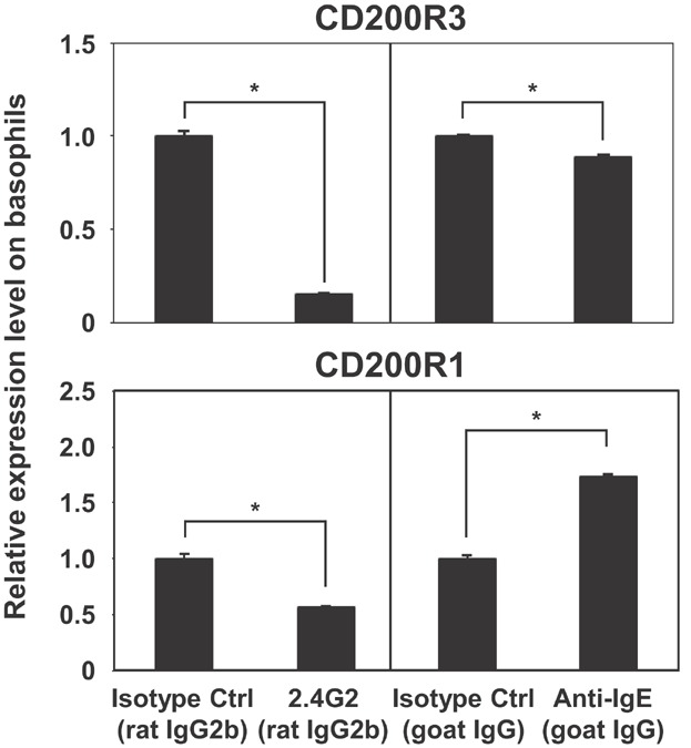 Increased expression of CD200R1 and decreased expression of CD200R3 on basophils in response to IgE and IgG receptor-mediated activation, respectively. Peripheral blood was incubated at 37°C for 2 h with 100 ng/mL anti-mouse FcγRIII/II (2.4G2), 300 ng/mL goat anti-mouse IgE, or the respective isotype control antibody. Relative expression levels of CD200R1 and CD200R3 on basophils are shown. Data are represented as means ± SDs ( n = 3). Asterisks indicate significant differences ( P