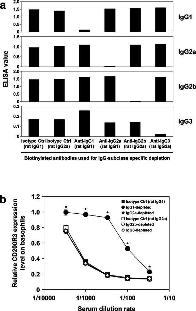 Basophil CD200R3 expression following depletion of specific IgG subclasses from antiserum used for passive sensitization. Each IgG subclass was depleted from mouse anti-β-LG serum using biotinylated antibodies specific to IgG1, IgG2a, IgG2b, IgG3, or corresponding isotype controls. (a) IgG subclass-specific depletion from antiserum was confirmed by ELISA. (b) Mouse peripheral blood was then sensitized with various dilutions of the depleted antisera. Antigen challenge followed by flow cytometry analysis was carried out as described in Figure 4 . Significant differences compared to the isotype control group are indicated by asterisks (* P