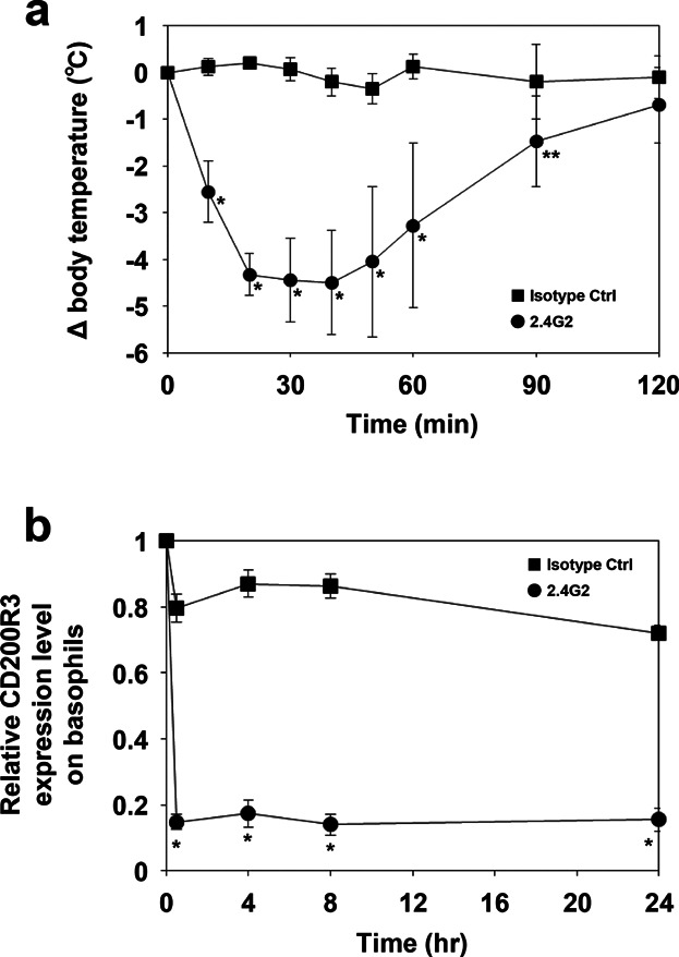 Decreased basophilic surface CD200R3 expression after induction of IgG-mediated anaphylaxis. (a) Mice were injected intravenously with 2.4G2 or isotype control, and rectal temperatures were monitored. Four mice per injection group were used. (b) The mice were then bled before injection (0 h), and 0.5, 4, 8, and 24 h afterwards. Basophil CD200R3 expression was subsequently evaluated. Data are represented as means ± SDs ( n = 4). Asterisks indicate significant differences between the two groups at each time point ( *P