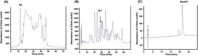 Purification of Kbot21 from scorpion Buthus occitanus tunetanus venom. (A) Chromatography of fraction BotG50 on semi preparative C8 reverse phase <t>HPLC</t> column. (B) Chromatography of fraction B1on <t>C18-RP-HPLC,</t> B'1 was collected at 29min. (C) Kbot21 was purified from the fraction B'1 by C18-RP-HPLC. It is collected at 21min.