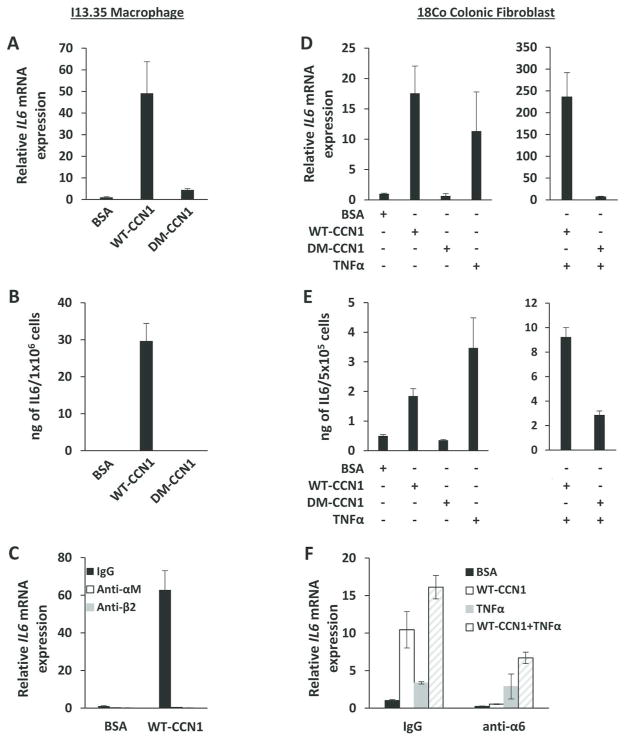 WT-CCN1, but not DM-CCN1, induces <t>IL-6</t> in macrophages and fibroblasts (A) IL-6 mRNA was measured by qRT-PCR and (B) IL-6 protein from conditioned media was measured by ELISA in serum-starved (overnight) I13.35 macrophages treated with 5 μg/ml of purified WT-CCN1 or DM-CCN1, or BSA for 24 hrs. (C) I13.35 macrophages were incubated with blocking mAbs against integrin α M (50 μg/ml) or β 2 (50 μg/ml) 1 hr prior to treatment with WT-CCN1 for 24 hrs. IL-6 mRNA was measured by qRT-PCR. (D) IL-6 mRNA was measured by qRT-PCR and (E) IL-6 protein from conditioned media was measured by ELISA in serum-starved 18Co fibroblasts treated with 5 μg/ml of purified WT-CCN1, DM-CCN1, BSA, or 25 ng/ml of TNFα for 24 hrs. (F) 18Co fibroblasts were incubated with blocking mAb against integrin α 6 for 1 hr, then treated with WT-CCN1, TNFα, or BSA for 24 hrs as above. IL-6 mRNA was measured by qRT-PCR. Data shown as mean ± SD of triplicate experiments.