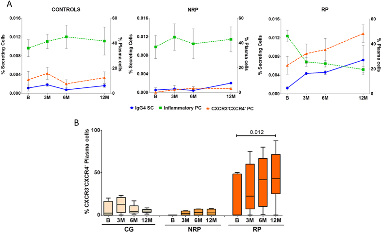Co-evolution of Plasma-cells with IgG4 secreting cells in CG, RP and NRP. ( A ) Changes in percentage of IgG4 secreting cells over time determined by ELISpot showed an inverse evolution to the changes in the percentage of inflammatory plasma-cells (CXCR3 + ). On the contrary, the same evolution pattern was found in CXCR3 - CXCR4 - plasma-cells in RP patients only. This result suggests the possibility they may be the same cells. ( B ) Box plots representing the median and IQRs of the percentages of CXCR3 - CXCR4 - plasma-cells for each time point. An increase of these cells was observed in RP patients during AIT. Statistical Wilcoxon and Mann-Whitney U tests were performed and, applying Bonferroni correction, significant changes were considered when p
