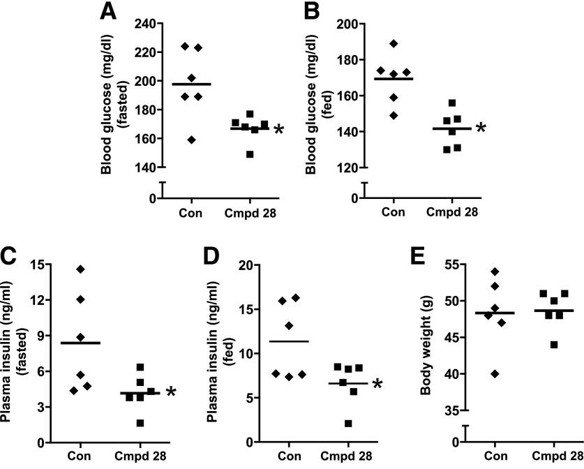 Cmpd 28 treatment improves glucose homeostasis in DIO mice. DIO mice (17 weeks old) were injected with 0.2 mg/kg body wt i.p. cmpd 28 or vehicle (control [Con]) each day for 3 weeks ( n = 6 mice per group). The mice were then assayed for fasting blood glucose ( A ), fed blood glucose ( B ), fasting plasma insulin ( C ), and fed plasma insulin ( D ), and body weight was determined ( E ) (* P