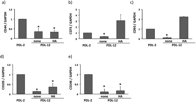 Expression of CD44 (a), CD73 (b), CD90 (c), CD105 (d) and CD146 (e) in BMSCs at PDL-2 or PDL-12 cultured with the growth medium alone (none) or hyaluronan (HA)-supplemented medium. The values are expressed relative to the value of BMSCs at PDL-2 as the mean ± SD of three independent experiments and significant differences between the values of the respective experimental groups and PDL-2 are indicated ( *P