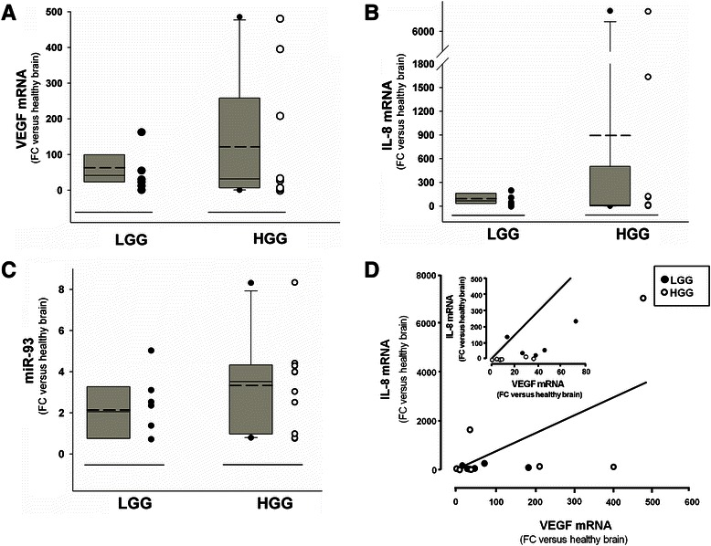 Expression of VEGF, IL-8 and miR-93 in Low-Grade Gliomas (LGGs) and High-Grade Gliomas (HGGs). VEGF mRNA ( a ) and IL-8 mRNA ( b ) levels relative to GAPDH were measured by RT-qPCR with TaqMan probes on RNAs isolated from FFPE sections of 6 LGG and 10 HGG and normalized to healthy brain reference RNA. Fold changes (FC) of expression over healthy brain reference RNA are reported. In the same LGGs and HGGs miR-93 was quantified ( c ) and normalized to healthy brain reference RNA. For panels a – c : dashed line: mean; solid line: median; grey box includes values from 5th to 95th centiles, vertical lines range from min to max values, excluding outliers which are represented by single dots. The data obtained in each glioma specimen are reported in the right side of the panels. d Relationship between VEGF mRNA and IL-8 mRNA in the same LGG (filled circles) and HGG (open circles) samples analyzed and reported in a – c . Regression straight line showing direct correlation was drawn by the least square method Sigmaplot. Inset reports the same graph expanded
