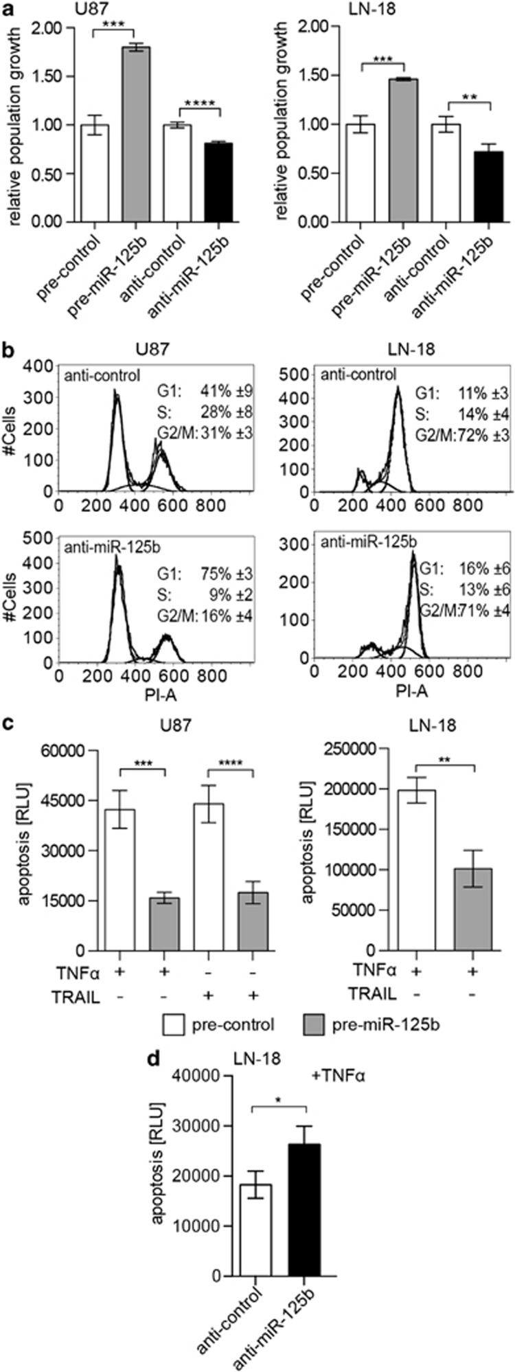 miR-125b induces proliferation and apoptosis resistance in GBM cells. ( a ) Population growth of U87 and LN-18 cells overexpressing miR-125b or anti-miR-125b relative to the control using the resazurin assay ( n =3). ( b ) Cell cycle analysis of nocodazole-treated cells by flow cytometry ( n =3). ( c ) Apoptosis. Cells were transfected with pre-miR-125b or pre-control and treated with 10 ng/ml TNF α or 250 ng/ml TRAIL for 48 h beginning 24 h post <t>transfection.</t> Apoptosis was assessed using the ApoTox-Glo Triplex assay ( n =3) ( d ) LN-18 cells overexpressing anti-miR-125b or anti-control were induced with 10 ng/ml TNF α for 24 h and subjected to the ApoTox-Glo Triplex assay ( n =3)