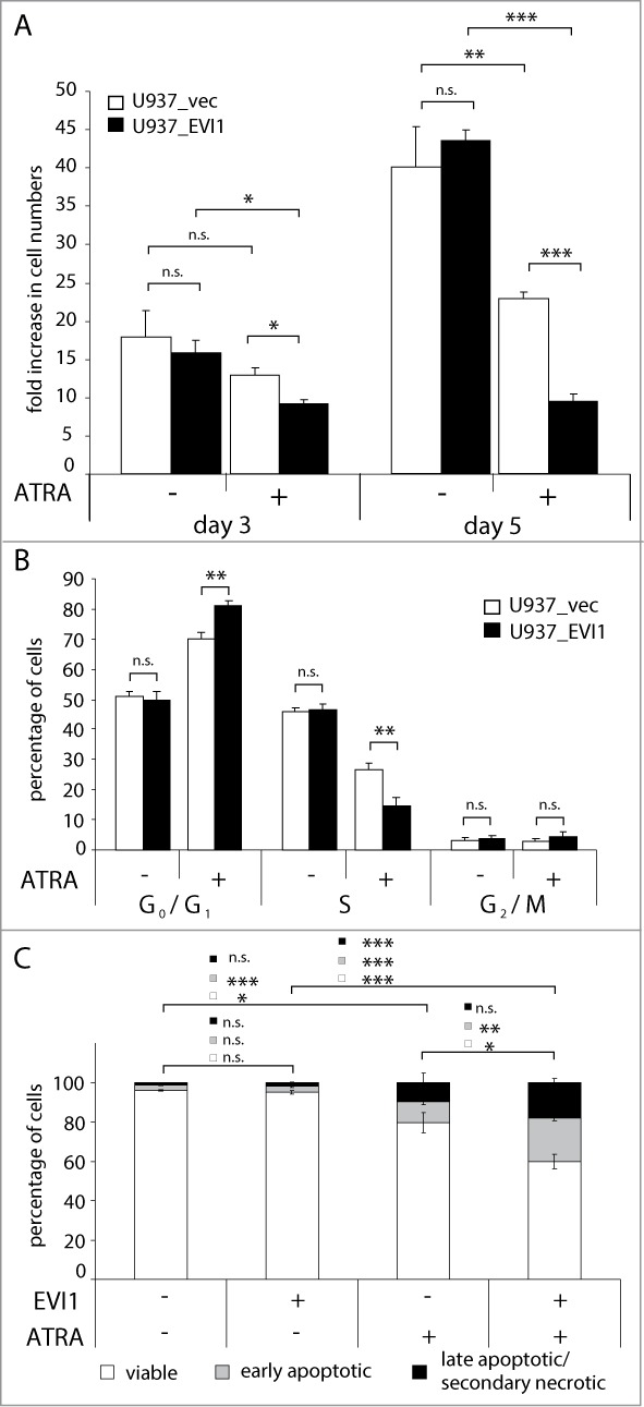 EVI1 enhances ATRA induced cell cycle arrest and apoptosis in U937 cells. ( A , B ) U937_vec cells (white bars) and U937_EVI1 cells (black bars) were treated with solvent or ATRA and counted at the indicated time points ( A ), or subjected to cell cycle analysis by propidium iodide staining and flow cytometry on day 5 ( B ). ( C ) U937_vec and U937_EVI1 cells were treated with solvent or ATRA for 7 days, stained with Annexin V and 7AAD, and analyzed by flow cytometry. Double negative cells were classified as viable (white portions of bars), Annexin V positive 7AAD negative cells as early apoptotic (gray portions of bars), and double positive cells as late apoptotic/secondary necrotic (black portions of bars). 89 Results represent means + SEs from at least 3 independent experiments. Significance was calculated using Student's 2-tailed t-test (*, P
