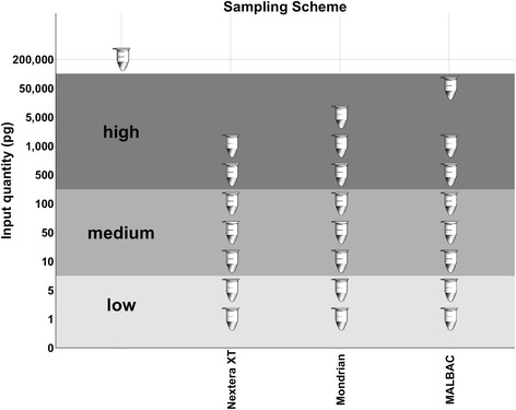 Sample overview. Each tube on this plot represents a mock metagenomic library preparation. The control library is an unamplified TruSeq library of the same mock community sample generated from 200 ng input DNA