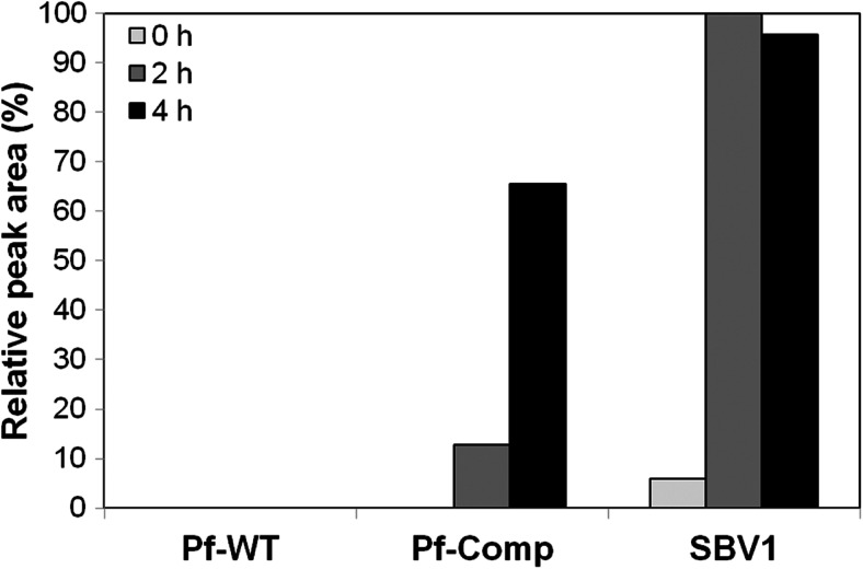 Conversion of β -valine to β -valinyl-CoA by cell-free extracts of cells grown on medium supplemented with β -valine and ammonium sulfate as nitrogen sources. Relative β -valinyl-CoA levels in the samples were analyzed after 0, 2, and 4 h of incubation using HPLC, where β -valinyl-CoA levels in SBV1 cell extracts after 2 h incubation was set at 100 %. Pf-WT β -valine growth-deficient strain Pseudomonas <t>fluorescens</t> <t>Pf0-1,</t> Pf-Comp P. fluorescens Pf0-1 containing the bvaA gene on the complementing plasmid p4-D1, SBV1 β -valine-degrading organism described in this study