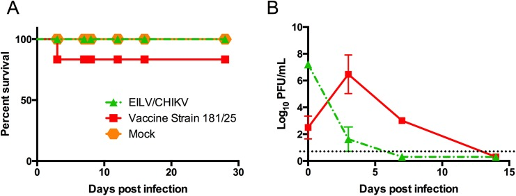Safety of EILV/CHIKV in the newborn mouse model of neurovirulence. (A) Survival of infant mice infected IC with EILV/CHIKV, live-attenuated vaccine strain 181/25, or PBS. (B) Replication of EILV/CHIKV or strain 181/25 in newborn mouse brain tissue.
