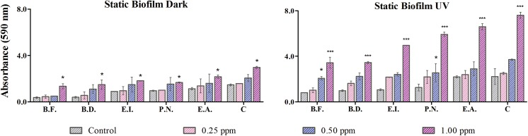 Biofilm aggregation: Assessment of biofilm formation under dark and UVA condition at 0.25, 0.5 and 1 μg/ml of TiO 2 NPs. '*' represents significant difference of treated cells with respect to control (n = 3). The abbreviations are as follows–E.A., Exiguobacterium acetylicum ; P.N., Pseudomonas nitroreducens ; E.I., Exiguobacterium indicum ; B.D., Brevundimonas diminuta and B.F., Bacillus flexus .
