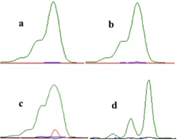 Differential peak morphologies of androgen receptor alleles resulting from <t>DNA</t> dilution and reagent use. Lynx positive control DNA sample amplified with Invitrogen <t>Taq</t> DNA Polymerase and diluted to 1:10 ( a ), 1:20 ( b ), and 1:50 ( c ) ratios with deionized water. Lynx positive control DNA sample amplified with Invitrogen Platinum Taq DNA Polymerase (no dilution necessary) ( d )