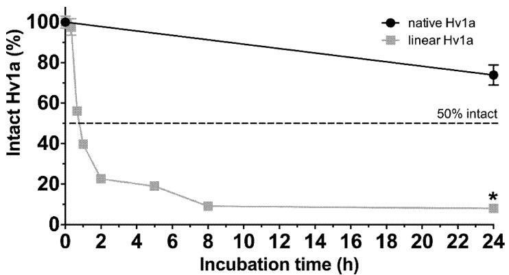 Proteolytic stability of Hv1a. Fraction of intact native Hv1a (black circles) and linear Hv1a (grey squares) after incubation with proteinase K (1:200 molar ratio) at pH 7.5 and 37 °C for up to 24 h. The values for native Hv1a were quantified relative to a sample of native Hv1a incubated for 24 h under the same conditions without proteinase K. Values for linear Hv1a were quantified relative to a sample of linear Hv1a at pH 7.5 incubated for 0 h without proteinase K. The dashed line indicates 50% intact toxin. Data are mean ± SD.